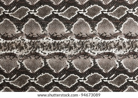 Snake skin , reptile. See my portfolio for more - stock photo