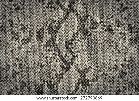 Snake skin silver vintage background from artificial leather texture - stock photo