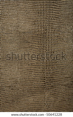 snake skin texture, background