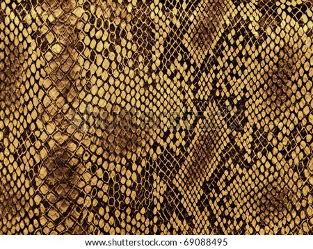 snake skin with the pattern lozenge style