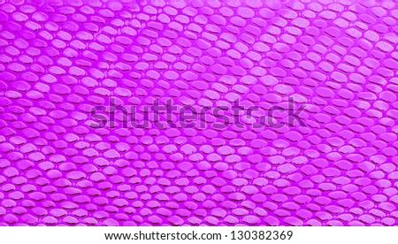 Snakeskin leather, purple background - stock photo