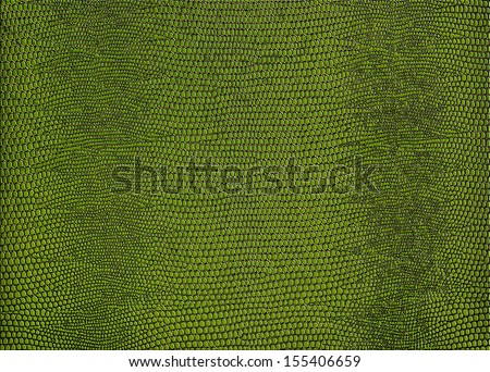 Snakeskin print in green for use as a background or texture. - stock photo