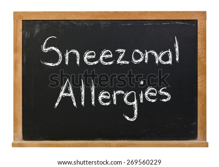 Sneezonal Allergies written in white chalk on a black chalkboard isolated on white - stock photo