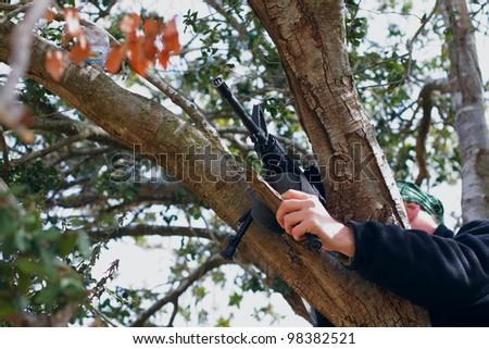 sniper on tree - stock photo