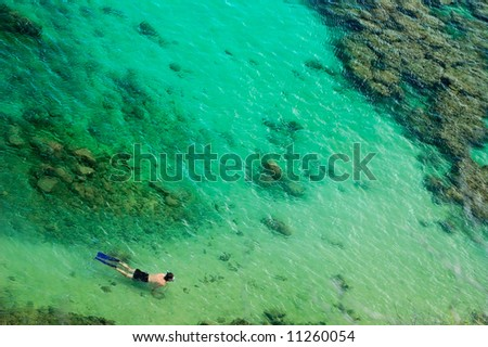 snorkeler swimming over coral reef, Hawaii Islands, Hanauma Bay