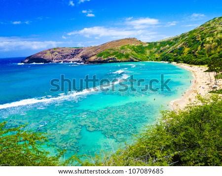 Snorkeling Bay in Oahu,Hawaii - stock photo