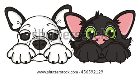 snout of French bulldog and a black kitten