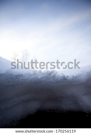 Snow and forest in winter season - stock photo
