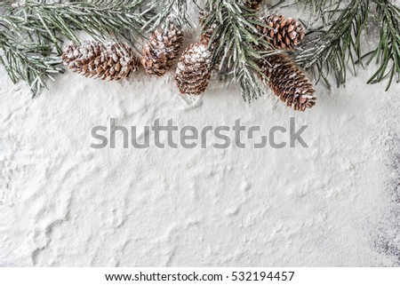 snow background with snowy fir branch and pine cones