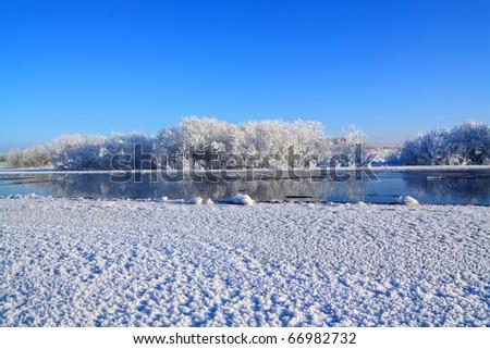 snow bushes near winter river - stock photo
