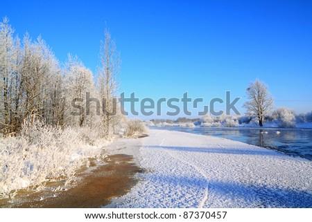 snow bushes on coast river - stock photo