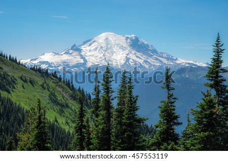 Snow capped Mount Rainier on a cloudless day with forest of pine trees in the foreground - stock photo