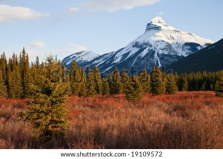 Snow capped mountain set against red colored foliage in Canadian Rockies - stock photo