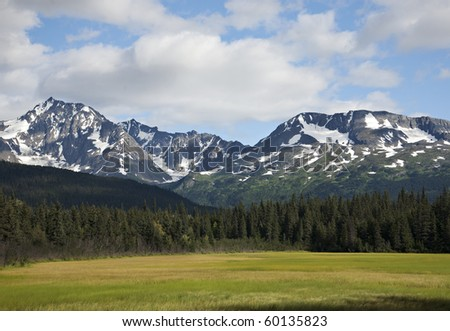 Snow-capped mountains, a meadow and blue sky with clouds in southern Alaska.