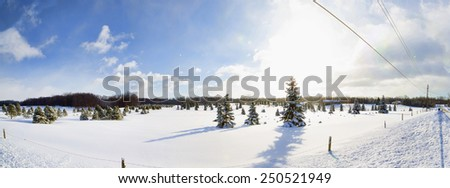 Snow covered, abandoned farm buildings in a wintery Western New York landscape.  - stock photo