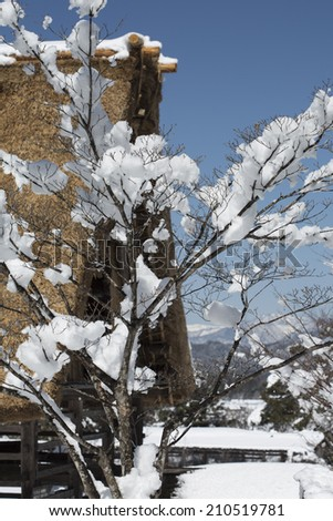 Snow-covered branches in foreground with Japanese thatched house and mountains in background - stock photo