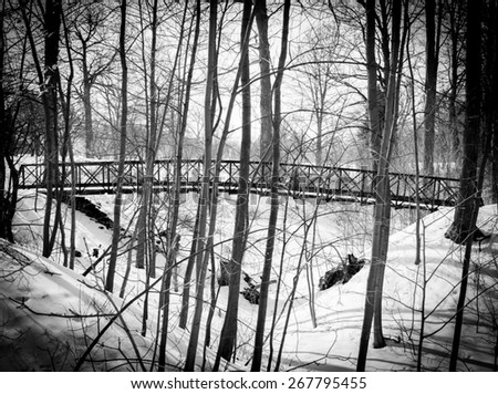 Snow Covered Bridge and Wooded Area - stock photo