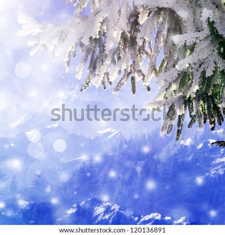 Snow-covered christmas tree branch above ski resort - stock photo