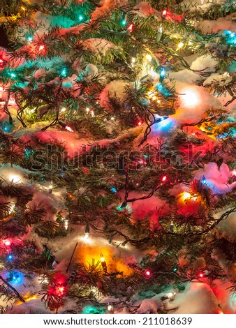 Snow Covered Christmas Tree with Multi Colored Lights - stock photo