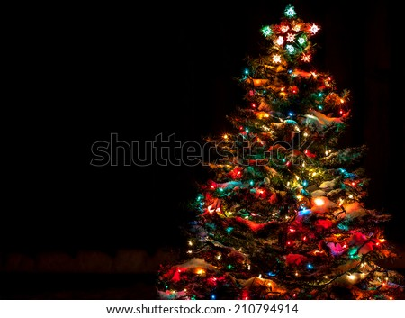 snow covered christmas tree with multi colored lights at night - Christmas Tree Night Light
