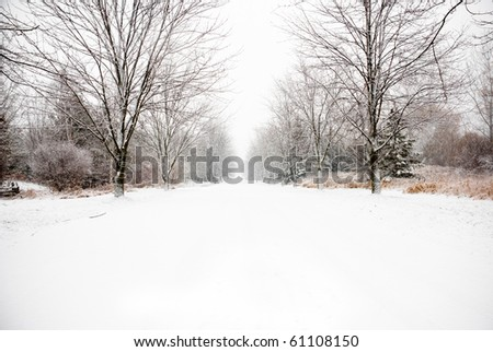Snow covered country road leading off into distance on a cold winter day. - stock photo