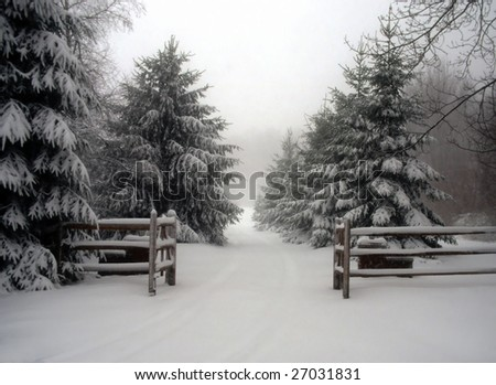 snow covered entry gates and pine trees
