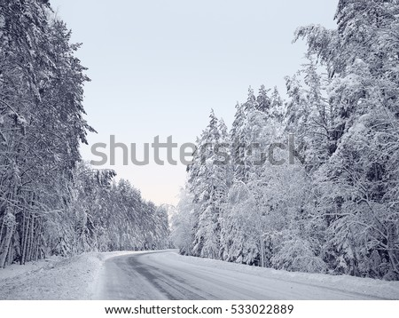 Snow-covered forest road between snowy fir trees and pines in a winter forest in the icy mist. Blue sky
