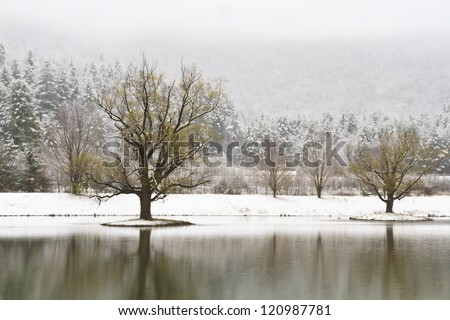 Snow-covered islands with trees on a Catskills lake near Big Indian, New York - stock photo