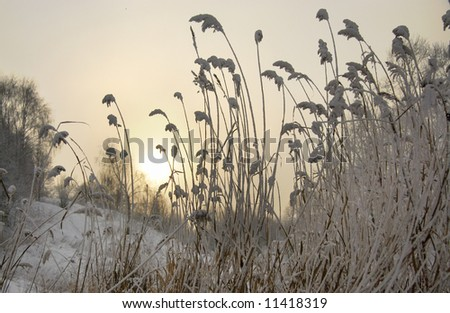 Snow covered landscape - stock photo