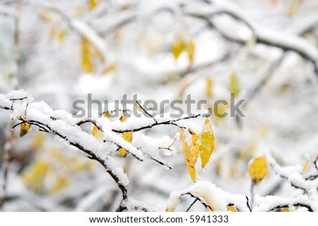 Snow covered landscapes in winter just in time for Christmas and holiday season - stock photo