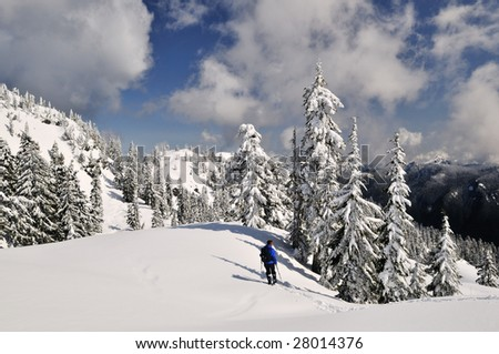 Snow covered mount Seymour park, north Vancouver