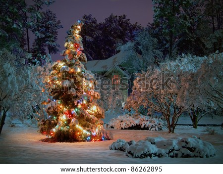 Snow covered outdoor Christmas tree with multicolored lights - stock photo