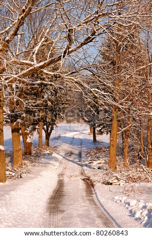 Snow covered park at early morning light. - stock photo