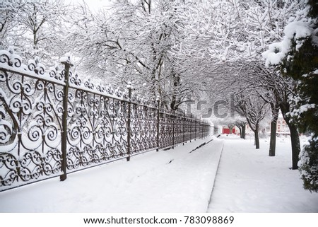 Snow Covered Pathway Winter.