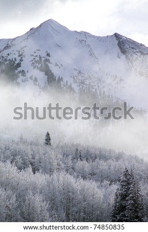 Snow-covered peak and trees, outside Crested Butte, Colorado - stock photo