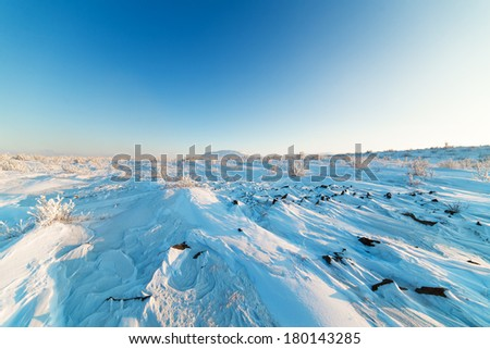 Snow-covered plateau, with scrubby bushes. - stock photo