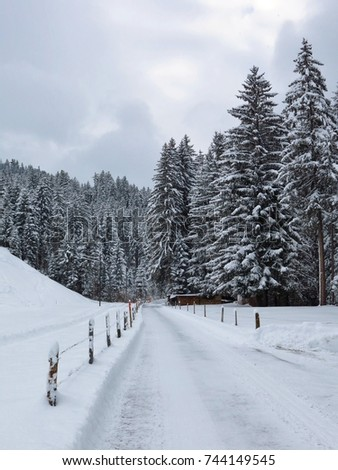 Snow covered road and wintry forest. Nature background.
