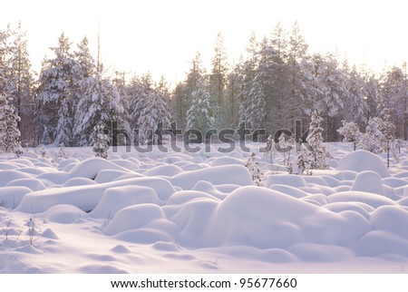 Snow Covered Rocks in front of a Forest - stock photo