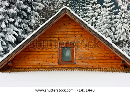 Snow covered roof with trees in the foreground - stock photo