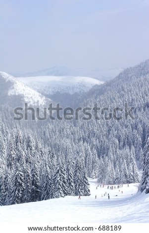 snow covered ski slope with pine trees - stock photo