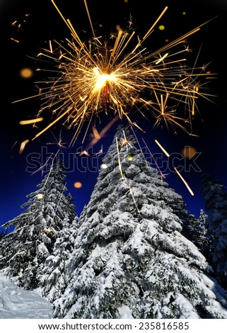 snow covered spruce trees and sparkler - stock photo