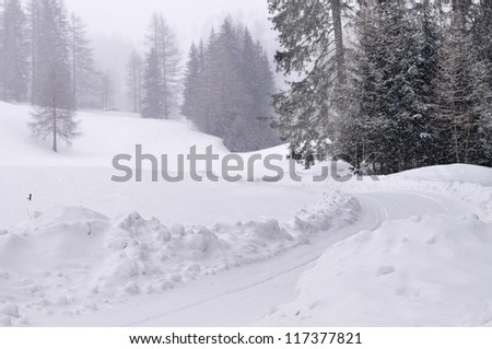 Snow covered track under snowfall in mountain landscape with forest in high Val Casies (Gsiesertal) in Alto Adige, Italy - stock photo