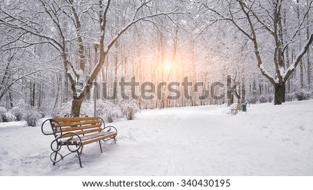 Snow-covered trees and benches in the city park. Sunset - stock photo