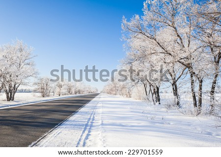 Snow covered trees on a clear frosty day. Winter road. Beautiful winter landscape. - stock photo