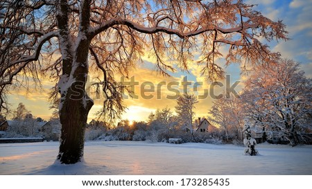 Snow covered winter countryside at the sunset in Latvia - stock photo