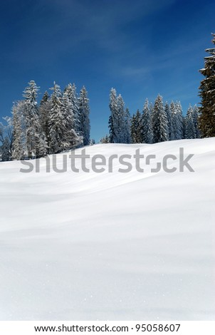 snow-covered winter landscape with fir trees - stock photo