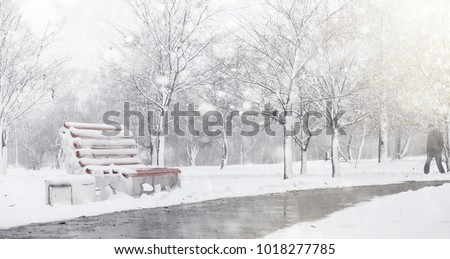 Snow-covered winter park and benches. Park and pier for feeding ducks and pigeons. The snow covered the autumn park.