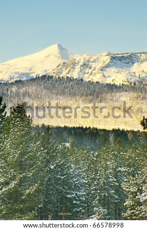 Snow covering mountain and trees in Lake Tahoe, California