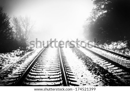 Snow covering rail track among trees