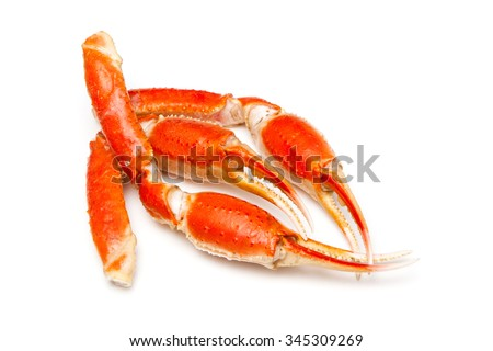 Snow crab (Chionoecetes opilio) or Tanner crab claws isolated on a white studio background. - stock photo